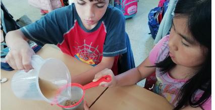 Projecte Magnet Escola Peremas
