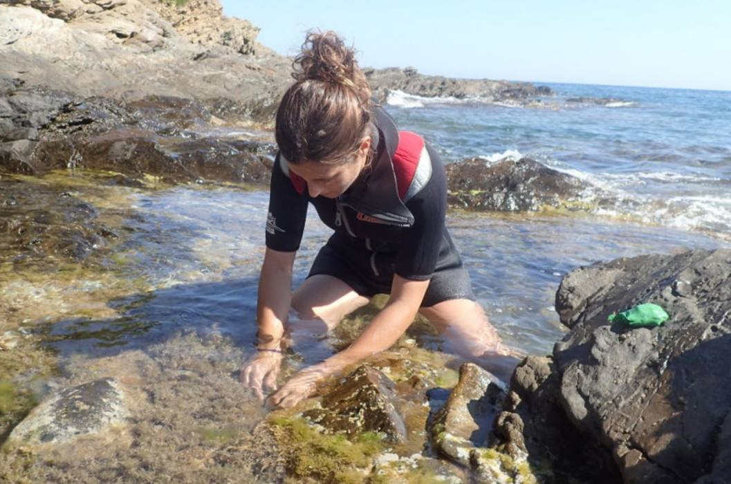 CEAB recollida mostres mar